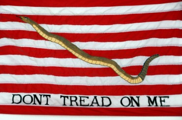 Navy Flag from War of Independence in 1775